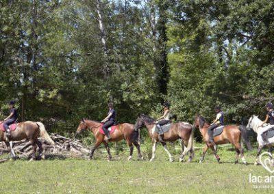 activité annecy poney